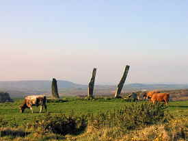 Five Fingers Standing Stones at Castletownshend